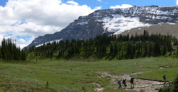 In Yoho Valley glorious hiking trails weave along high alpine plateaus.
